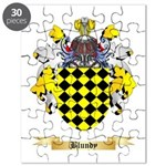 Blundy Puzzle