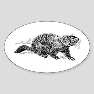 Ground Hog Day Sticker