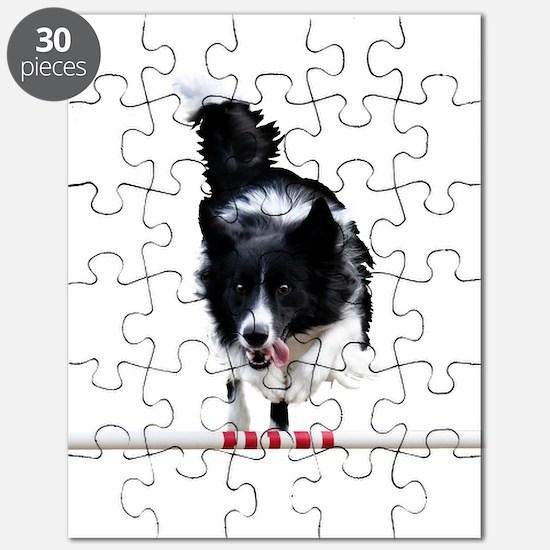 Border Collie jump Puzzle