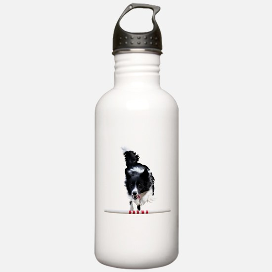 Border Collie jump Water Bottle