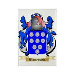 Blumenstein Rectangle Magnet (100 pack)
