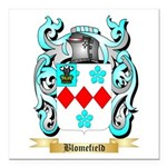Blomefield Square Car Magnet 3