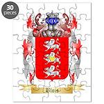 Blois Puzzle