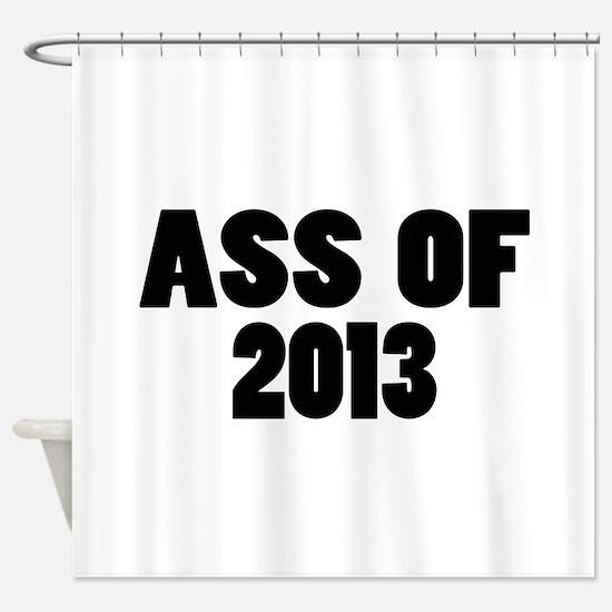 Ass Of 2013 Shower Curtain
