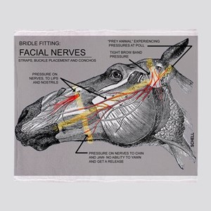 Facial Nerves and the importance of bridle fit Thr