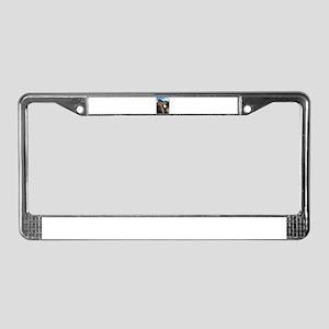 Funny Horse Cafe-MaDCoLT Smile License Plate Frame