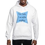 Dear Santa, I can explain Hooded Sweatshirt