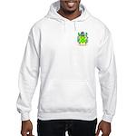 Blew Hooded Sweatshirt