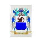 Bleuel Rectangle Magnet