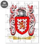 Bleakley Puzzle