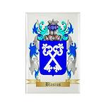 Blasius Rectangle Magnet (100 pack)