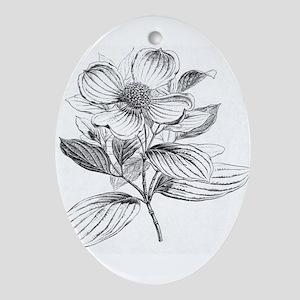 Dogwood flower vintage artwork Ornament (Oval)