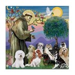 St Francis-10dogs Tile Coaster
