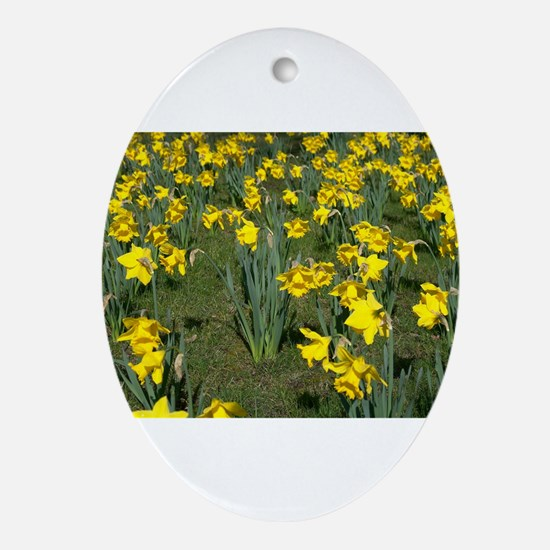 Easter Narcissus Ornament (Oval)