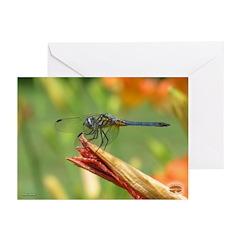 06 07 Calendar Greeting Card