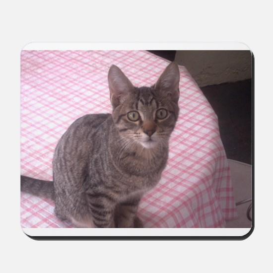 Beautiful Tabby Mousepad