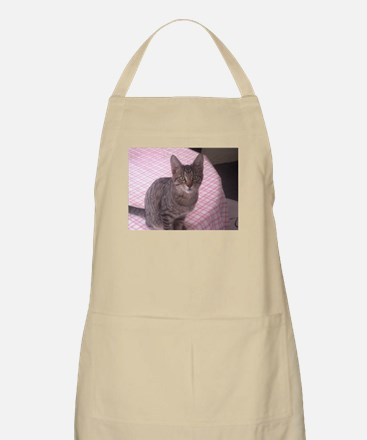 Beautiful Tabby Apron