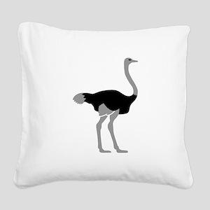 Ostrich Square Canvas Pillow