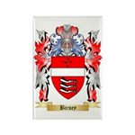Birney Rectangle Magnet (100 pack)