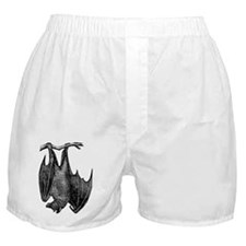 Hanging Bat Boxer Shorts