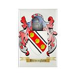 Birmingham Rectangle Magnet (10 pack)