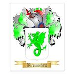 Bircumshaw Small Poster