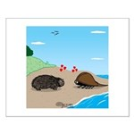 Porcupine Meets Horseshoe Crab Small Poster
