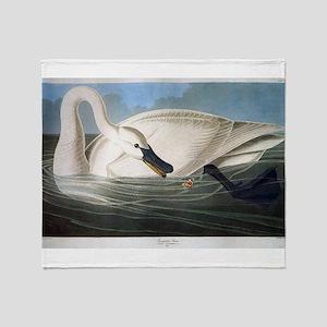 J J Audubon - Swan Throw Blanket