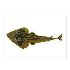 Guitarfish Ray fish Postcards (Package of 8)
