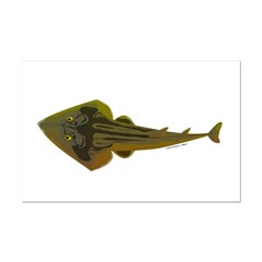 Guitarfish Ray fish Posters