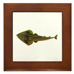 Guitarfish Ray fish Framed Tile