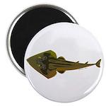 Guitarfish Ray fish Magnet