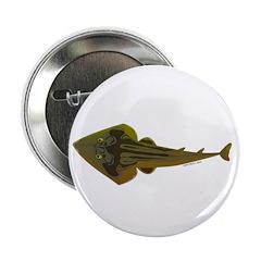 Guitarfish Ray fish 2.25