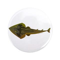 Guitarfish Ray fish 3.5