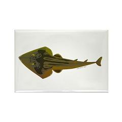 Guitarfish Ray fish Rectangle Magnet (100 pack)