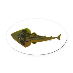 Guitarfish Ray fish Oval Car Magnet