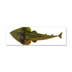 Guitarfish Ray fish Car Magnet 10 x 3