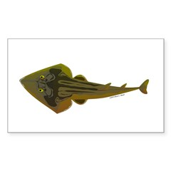 Guitarfish Ray fish Decal