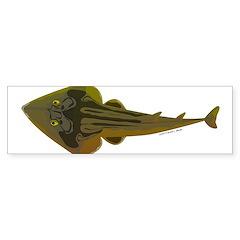 Guitarfish Ray fish Bumper Bumper Sticker