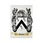 Biglio Rectangle Magnet (100 pack)