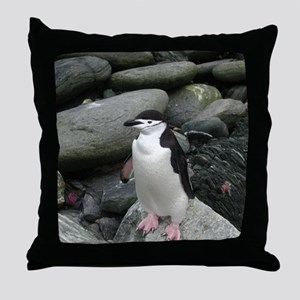Chinstrap Penguin on the Rocks Throw Pillow