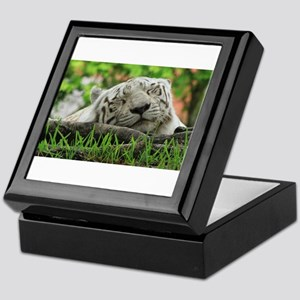 Sleeping Beauty/Bengal White Tiger Keepsake Box