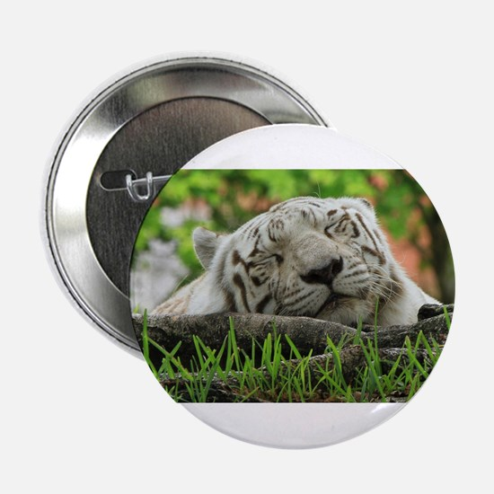 """Sleeping Beauty/Bengal White Tiger 2.25"""" Button"""