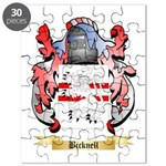 Bicknell Puzzle