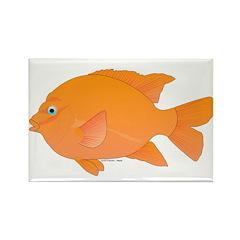 Garibaldi Damselfish fish Rectangle Magnet (100 pa