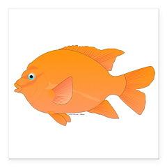 Garibaldi Damselfish fish Square Car Magnet 3