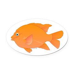 Garibaldi Damselfish fish Oval Car Magnet