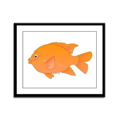 Garibaldi Damselfish fish Framed Panel Print