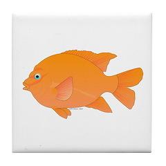 Garibaldi Damselfish fish Tile Coaster