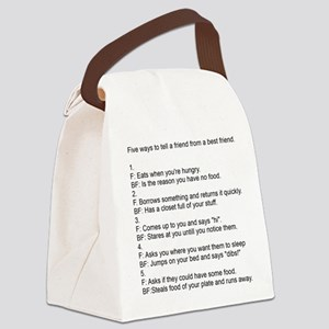 five ways to tell Canvas Lunch Bag
